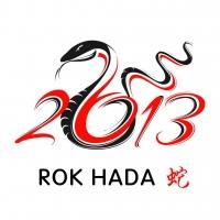 Rok HADA 2013