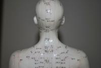 Akupunkturní mapa