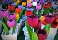 Krásné barvy