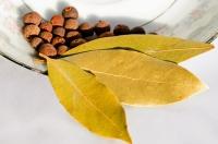 Bobkový list a nové koření