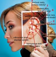 Masážní body na uchu