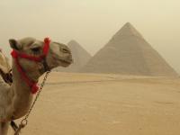 Pyramidy s Velbloudem